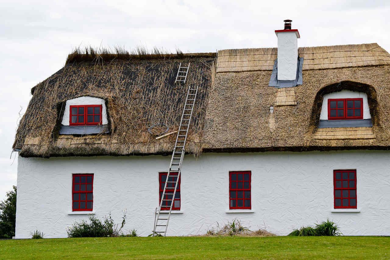 Een rieten dak is het een slimme keuze voor mijn woning